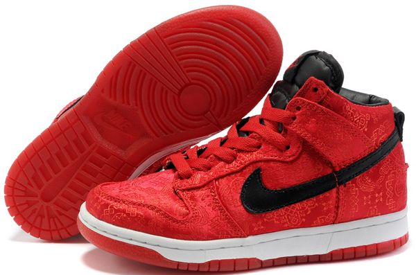 boys Nike Dunk SB High Tops